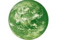 В Житомирі до Дня Європи буде реалізовано проект «Зелена планета»