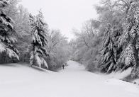 Погода в Житомире - этой зимой обещают самый лютый мороз за последние 1000 лет