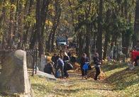 Приватний підприємець позрізає сухі гілки та дерева на території Польського кладовища у Житомирі