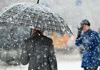 В Україні дощ зі снігом. Житомирська область не виключення