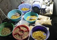 У Житомирській області силовики прикрили нелегальний цех з обробки бурштину. Фото