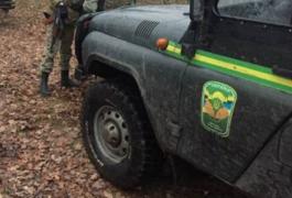 Вночі на півночі Житомирської області три бригади ловили лісових браконьєрів