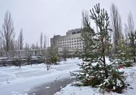 Чорнобильці Житомирщини у Прип'яті побачили прикрашену ялинку