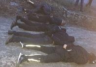 """Спецоперація силовиків: у Запорізькій області впіймали """"донецьких"""", які пограбували вінницьких підприємців під Бердичевом. Фото"""