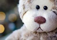 Українка намагалась нелегально перевезти з Білорусі у Житомирську область 70 плюшевих ведмедів