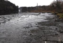 """В Тетереві знову """"гуляє"""" рівень води. Фото"""