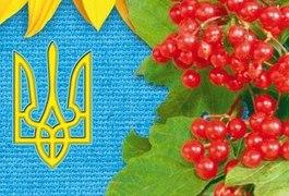 В Україні затримали двох інформаційних диверсантів