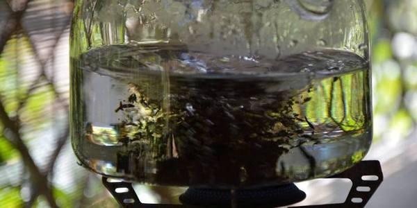 Чай методом Лу Юя