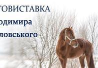"""""""Такі різні коні"""" Володимира Павловського"""
