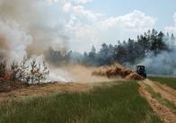 На Житомирщині лісники гасили бутафорську пожежу
