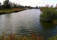 Пропозиція для заможних громадян: пів-гектара приватизованої землі в Житомирі під будівництво з озером на території