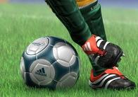 Житомирская областная администрация приняла решение возобновить профессиональную футбольную команду в области