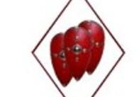 """Декларация Житомирской обласной общественной организации """"Команда """"За СВОИХ!"""""""