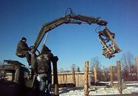На Житомирщині депутат сільради, зловживаючи владою, організував незаконну порубку лісу