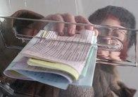 Виборчий казус в Житомирі: Богунці до облради голосували за Корольовців і навпаки