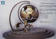 В Житомирі місцевому футболові поставлять пам'ятник