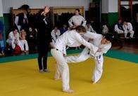 В Житомирі вихованці шкіл дзюдо підкорювали чемпіонські вершини