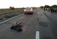 """Происшествия Житомирщины: """"Ловила ворон на дороге"""" - водитель """"Форда"""" сбил женщину."""