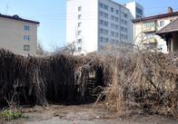 """В Житомирі """"Фронт Змін"""" та місцева влада не поділили добру справу"""