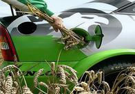 Бензин на житомирських заправках розбавлятимуть біоетанолом