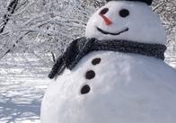 Житомиряне в ожидании первого снега. Прогнозируют резкое похолодание.