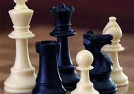 В Житомире начинается шахматный турнир 2010