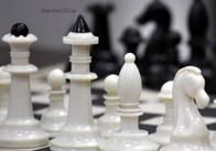 В Житомире стартовал открытый чемпионат по шахматам! (фото)