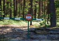 На Житомирщині людям заборонили ходити до лісу