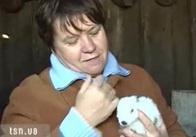 На Житомирщині полює чупакабра. ВІДЕО