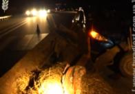 Под Житомиром от столкновения с телегой и конем сильно пострадали 3 автомобиля. ВИДЕО