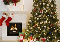 """Скоро Новый Год в Житомире официально объявят """"открытым"""". На площади Королева начали устанавливать новогоднюю елку"""