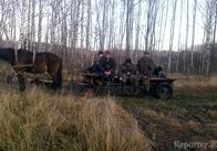 На Житомирщині п'яні браконьєри погрожували розправою начальнику мисливського господарства. ДОКУМЕНТ. ФОТО