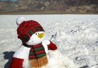 Вероятность отпраздновать Новый год в Житомире среди снежных сугробов очень мала